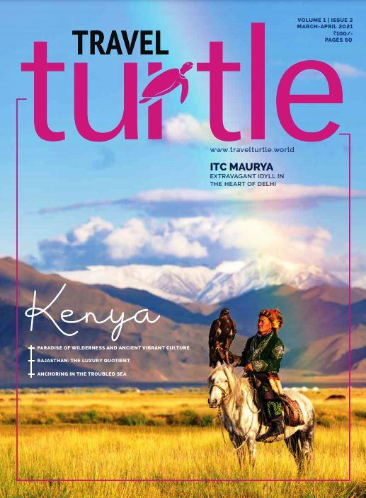 Travel Turtle cover
